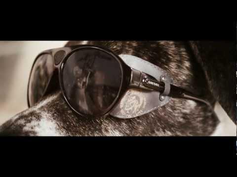Dogs in Sunglasses – Diesel